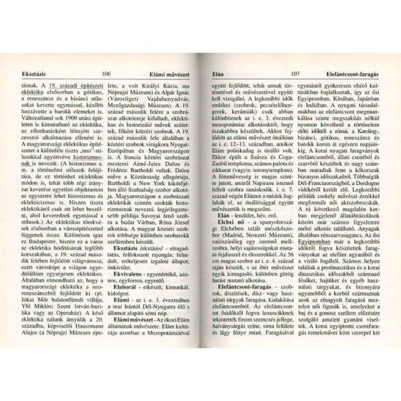 Művészettörténeti lexikon diákoknak /Szállítási sérült/