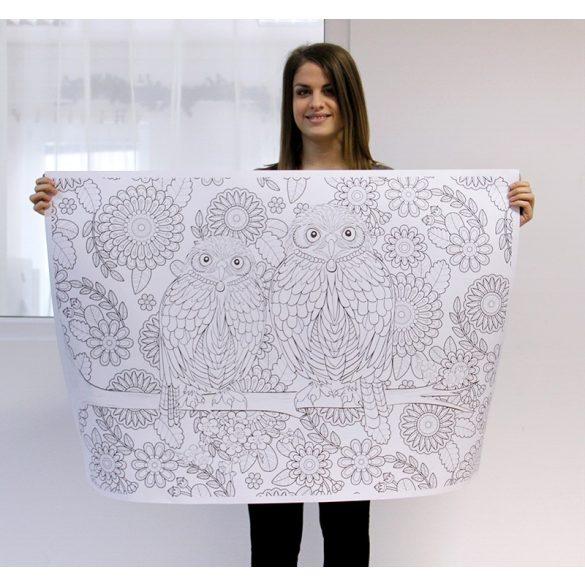 Óriás felnőtt színező (70x100cm) : Bagoly