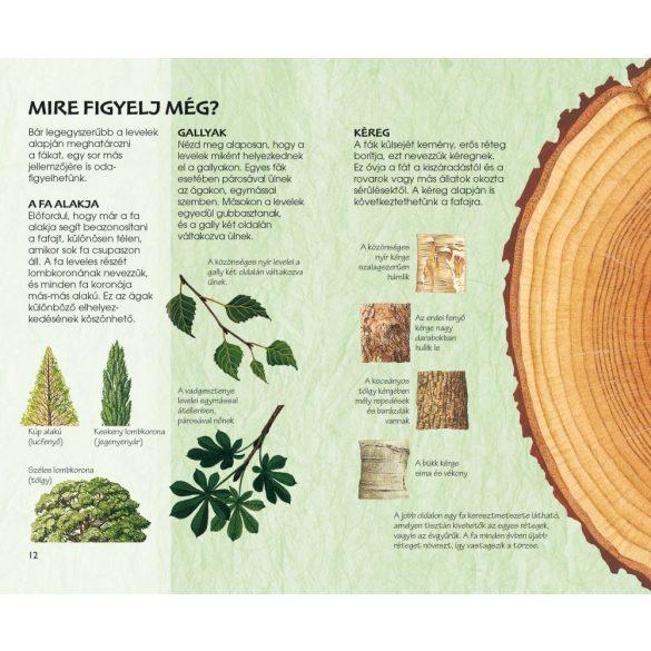 Az erdő fái - Természetbarátok zsebkönyve