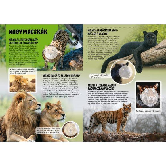 Bámulatos állatvilág - Matricás ismeretterjesztő